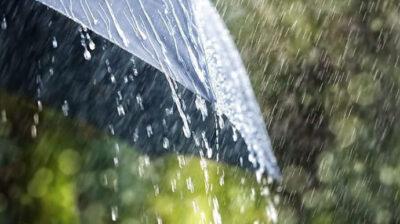Завтра пройдуть грози та дощі по всій території України